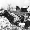 «…защитники Севастополя самоотверженно дрались до последней возможности»