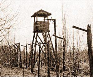12 января 1950 года. В СССР вновь введена смертная казнь за измену, шпионаж и саботаж