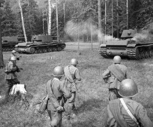 Кавказская Прохоровка: как разгромили дивизию СС «Викинг» в 1942 году